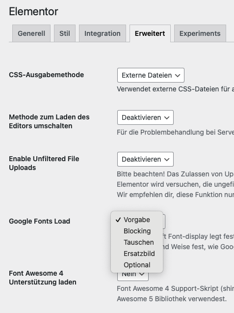 Google Fonts Load